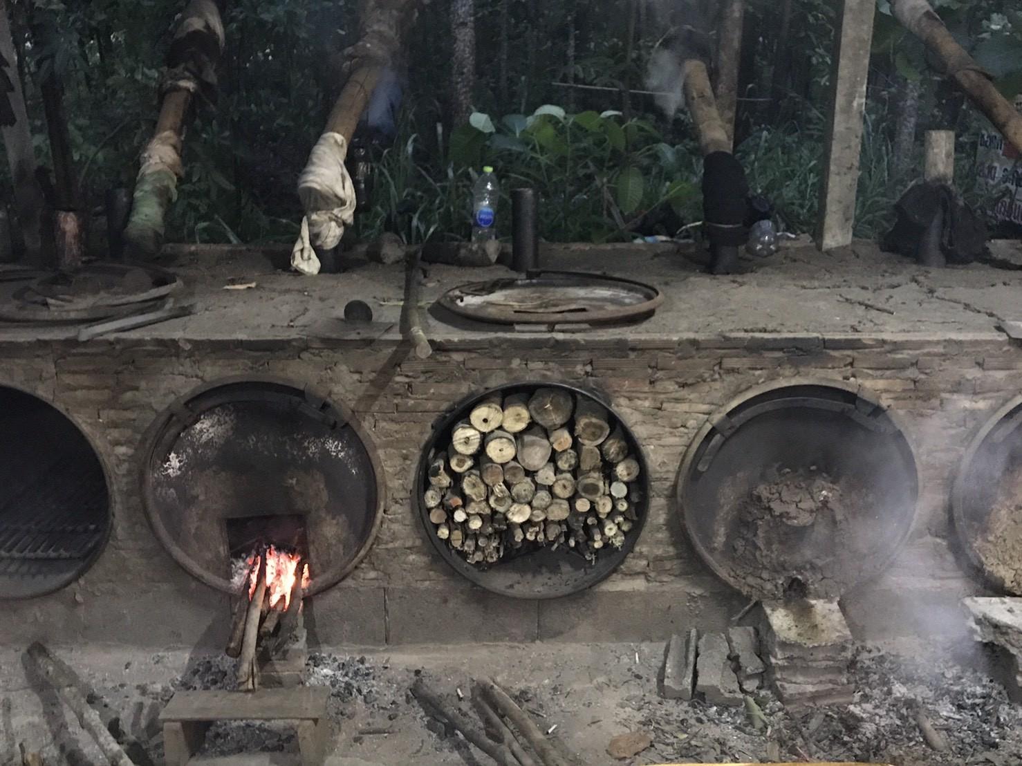 ปลูกป่า … หลังเกษียณมีเงินใช้จาก 'ต้นไม้' แค่เป็นส่วนหนึ่งดูแลโลก … สุขก็ล้นเหลือ